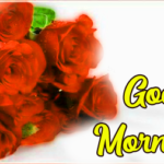 Best 1658+ Amazing good morning Pics Wallpaper Pictures Free Download