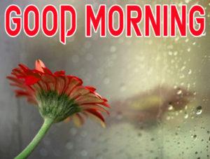 Beautiful Good Morning Images wallpaper pics download