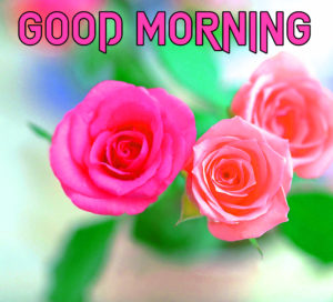 Beautiful Good Morning Images pics for free download