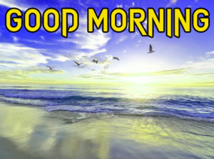 Beautiful Good Morning Images wallpaper pics for Friend
