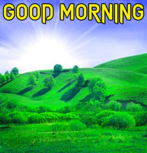 Beautiful Good Morning Images picture download