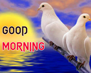 Beautiful Good Morning Images picture for whatsapp
