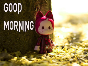 Beautiful Good Morning Images wallpaper pics for best friend
