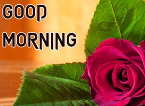 Beautiful Good Morning Images pics photo download