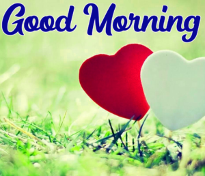 Good Morning Images Wallpaper Pics Free