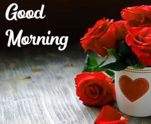 Red Rose Good Morning Images Pics