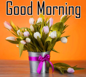 Friend Latest Good Morning Images pics for whatsapp