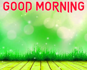 Friend Latest Good Morning Images photo download