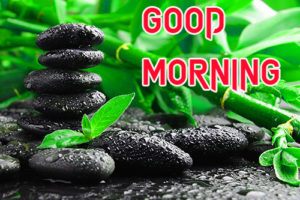 Friend Latest Good Morning Images pics for whastapp