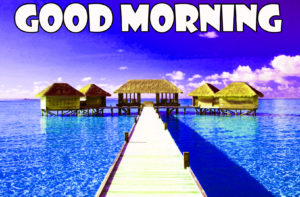 Friend Latest Good Morning Images pics picture download
