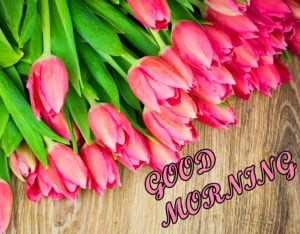 Friend Latest Good Morning Images picture for facebook