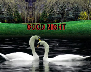Good Night Images wallpaper pics photo for facebook