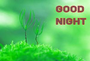 Good Night Images wallpaper pics photo download