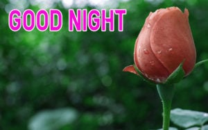 Good Night Images picture pics for girlfriend
