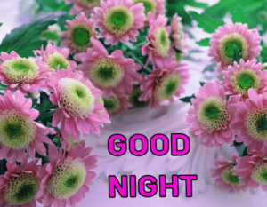 Good Night Images wallpaper picture download