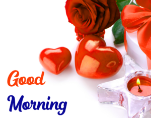 Beautiful Good Morning Images With Red Rose Free Download