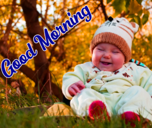 Beautiful Good Morning Images Pics HD Download for Whatsapp