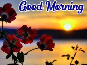 Beautiful Good Morning Images for Friend