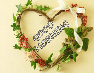 Beautiful Good Morning Images Pictures Free for Whatsapp