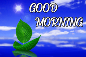 Beautiful Good Morning Images Pics photo Dow load Pics Free Latest