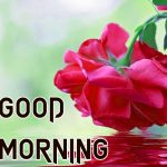 Top 1234+ Good Morning Images Wallpaper Pics Photo HD for Sister