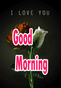 Sweet Romantic Lover Good Morning Wishes picture for girlfriend