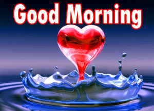 Sweet Romantic Lover Good Morning Wishes images  photo for lover