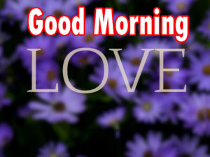 Sweet Romantic Lover Good Morning Wishes images  wallpaper for friend