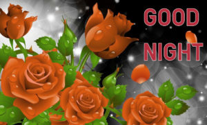 Good Night Images wallpaper photo for facebook