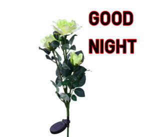 Good Night Images photo pics for girlfriend