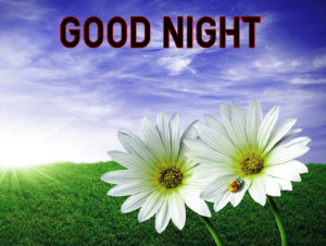 Good Night Images wallpaper picture for girlfriend