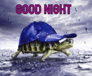 Good Night Images photo picture pics for best friend