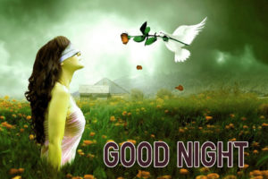 Good Night Images wallpaper photo pics for facebook