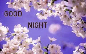 Good Night Images wallpaper photo pics for best friend