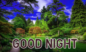 Good Night Images pics photo for friend