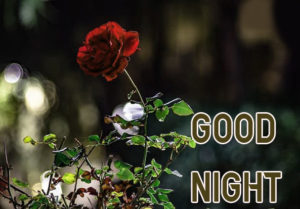 Good Night Images photo pics picture for facebook