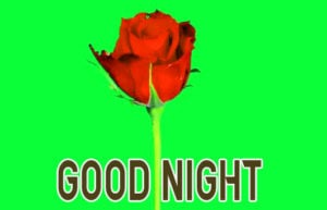 Good Night Images wallpaper pics photo for girlfriend
