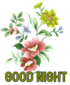 Good Night Images photo pics for facebook