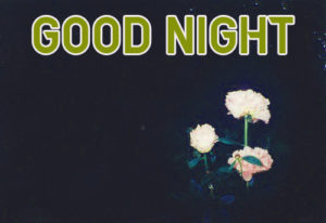 Good Night Images picture pics for friend