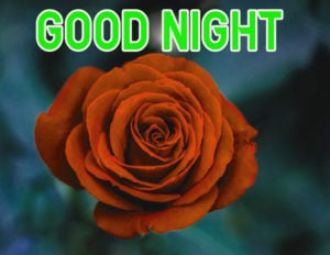 Good Night Images wallpaper photo for best friend