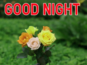 Good Night Images wallpaper photo pics for friend