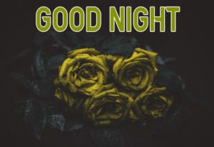 Good Night Images pics photo picture for friend