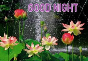 Good Night Images wallpaper pics download