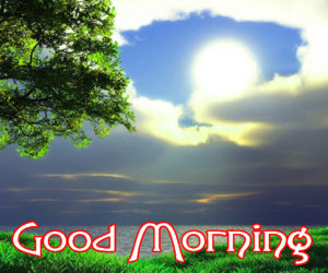 Very Nice Good Morning HD Images photo pics for whatsapp