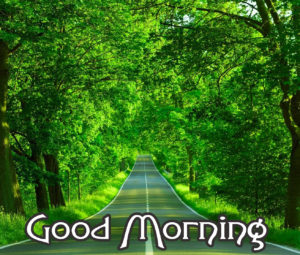 Very Nice Good Morning HD Images pics for facebook