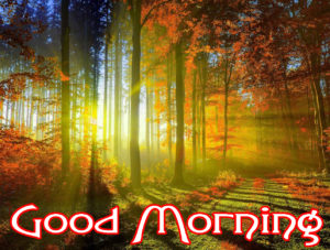 Very Nice Good Morning HD Images picture for whatsapp