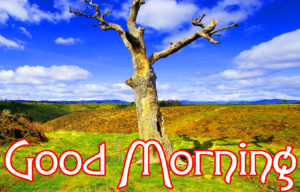 Very Nice Good Morning HD Images photo for whatsapp