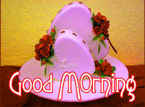 Very Nice Good Morning HD Images photo for best friend
