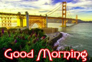 Very Nice Good Morning HD Images picture for friend
