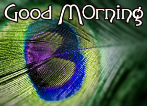 Very Nice Good Morning HD Images picture download